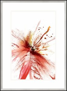 motyw czerwony kwiat na grafice